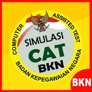 Simulasi CAT CPNS Online 2015-2016